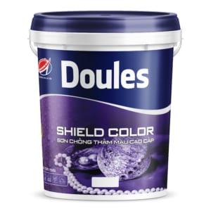 Sơn chống thấm màu Doules Shield Color