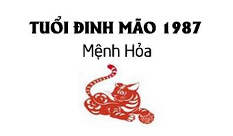 đinh mão 1987