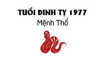 đinh tỵ 1977